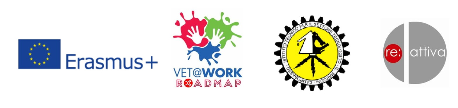 logo vetwork roadmap 1
